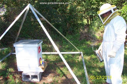 Installer une ruche dans son jardin decorer sa installer for Avoir une ruche dans son jardin